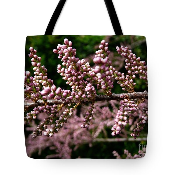 Tote Bag featuring the photograph Summer Tamarisk 2 by Jean Bernard Roussilhe