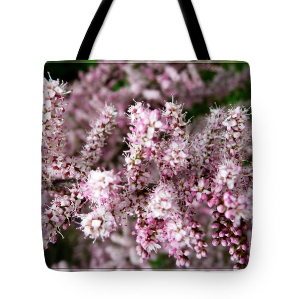 Tote Bag featuring the photograph Summer Tamarisk by Jean Bernard Roussilhe