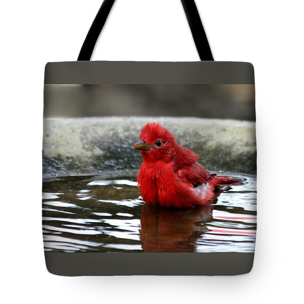 Summer Tanager In Bird Bath Tote Bag