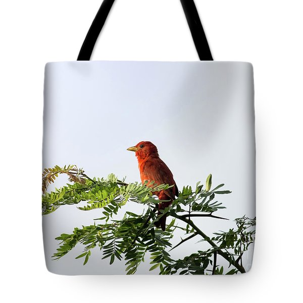 Tote Bag featuring the photograph Summer Tanager In Mesquite Scrub by Robert Frederick