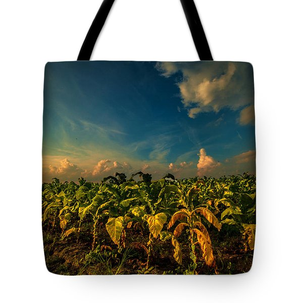 Summer Tobacco  Tote Bag