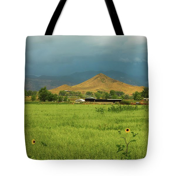 Tote Bag featuring the photograph Summer View Of  Hay Stack Mountain by James BO Insogna