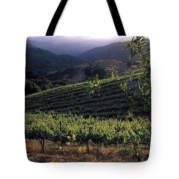 Summer Vineyard Tote Bag by Kathy Yates