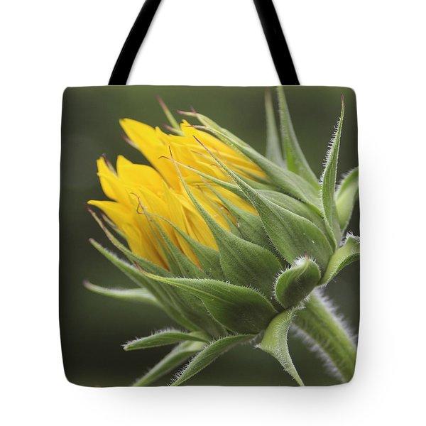 Summer's Promise - Sunflower Tote Bag