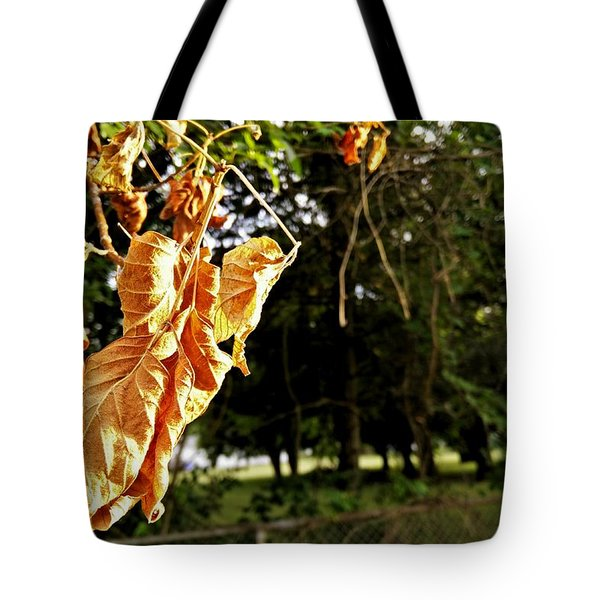 Summer's Toll Tote Bag