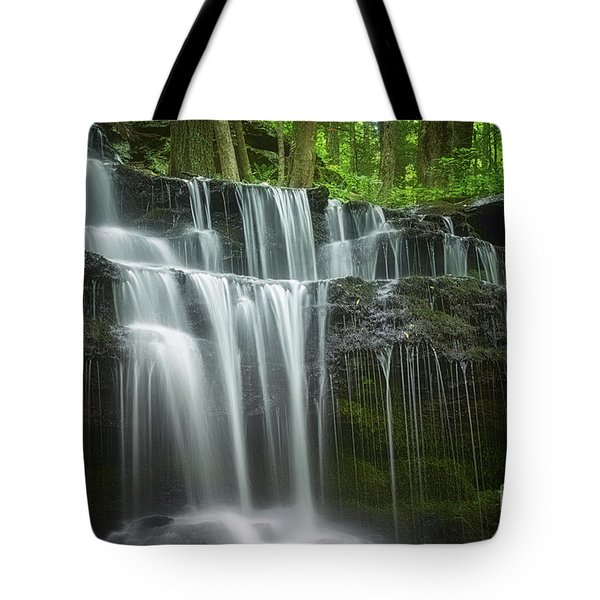 Tote Bag featuring the photograph Summertime At Gunn Brook Falls by Mary Lou Chmura