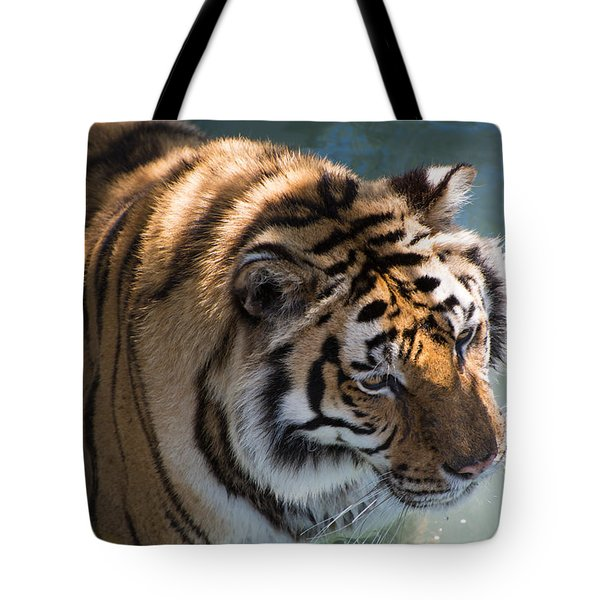 Tote Bag featuring the photograph Summertime Wading by Colleen Coccia
