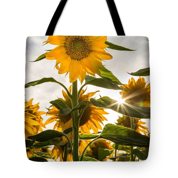 Sun And Sunflowers Tote Bag