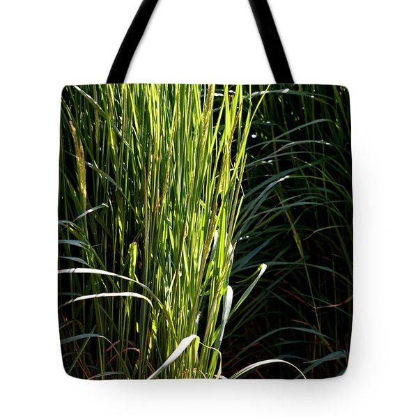 Tote Bag featuring the photograph Sun At The Edge by Lyle Crump