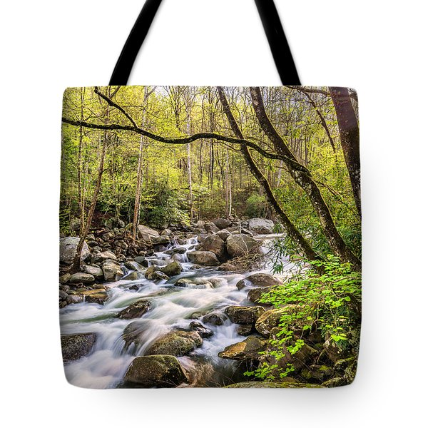 Sun Bathed Tote Bag by Anthony Heflin