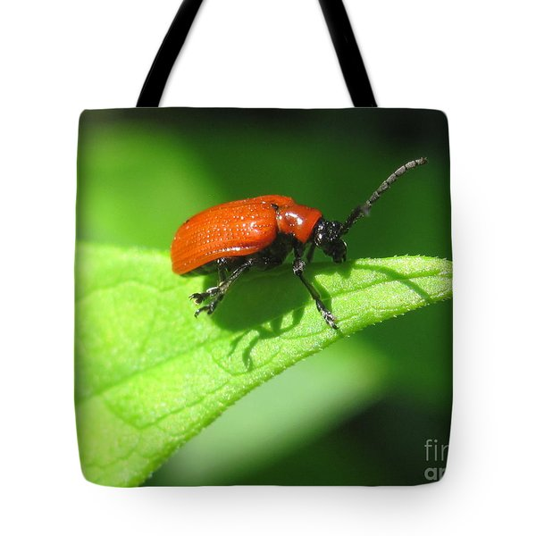 Tote Bag featuring the photograph Sun Bathing  by Irina Hays