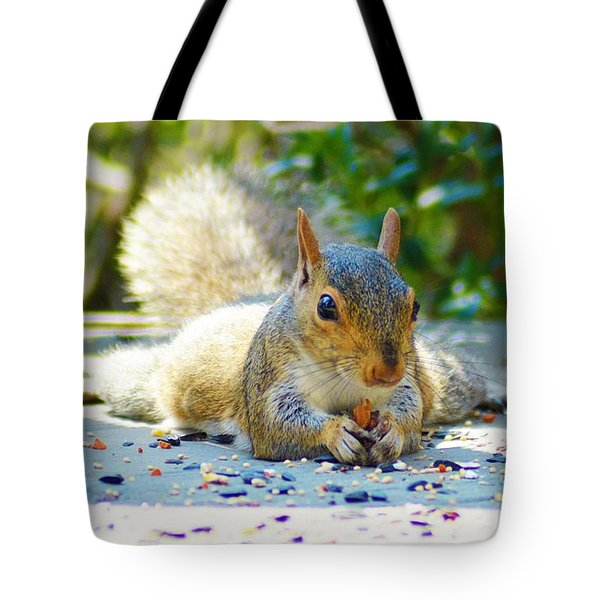 Sun Bathing Squirrel Tote Bag