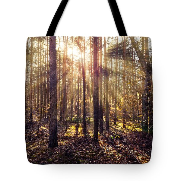 Sun Beams In The Autumn Forest Tote Bag