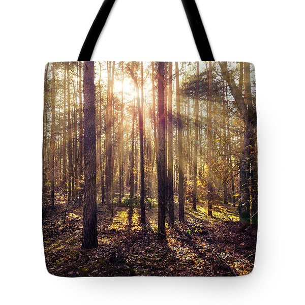 Tote Bag featuring the photograph Sun Beams In The Autumn Forest by Dmytro Korol