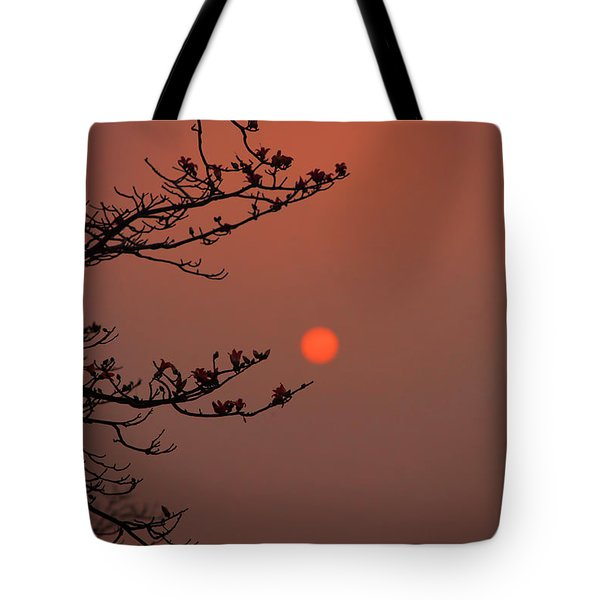 Sun Blossoms Nature Asia  Tote Bag