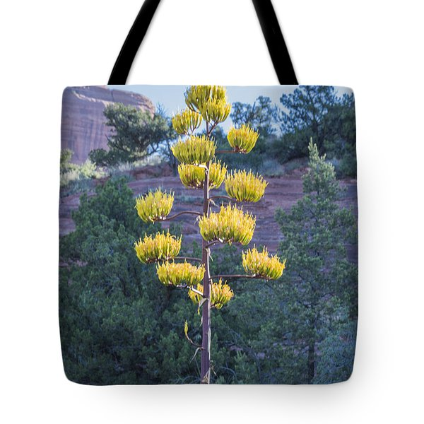 Sun Brightened Century Plant Tote Bag