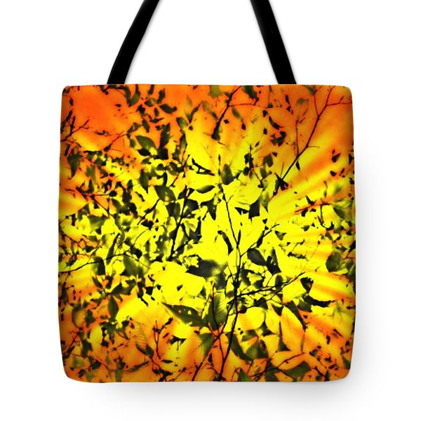 Tote Bag featuring the photograph Sun Dappled Leaves by Robin Regan