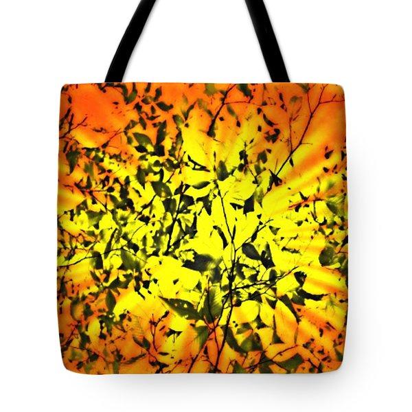 Sun Dappled Leaves Tote Bag