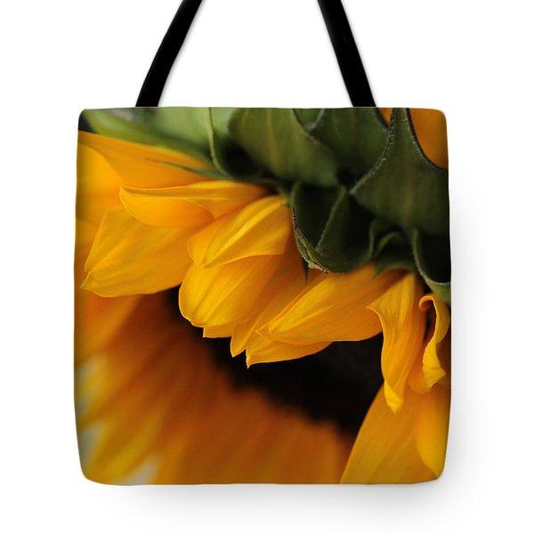 Sun Dozing  Tote Bag
