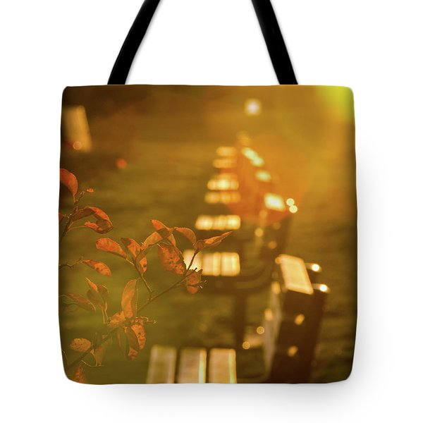 Tote Bag featuring the photograph Sun Drenched Bench by Darryl Hendricks