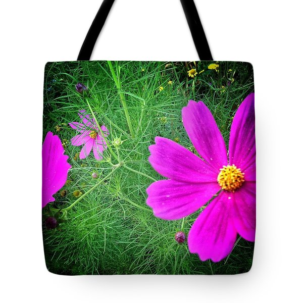 Tote Bag featuring the photograph Sun-drenched by Olivier Calas