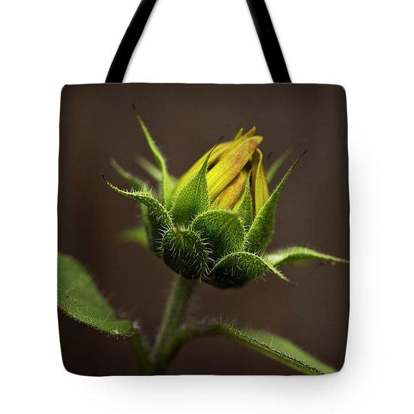 Sun Flower Blossom Tote Bag