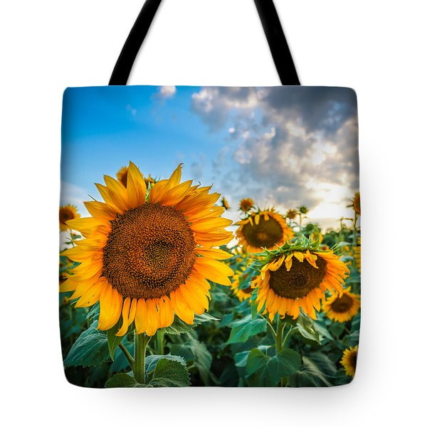 Sun Flower Glow Tote Bag by Mina Isaac