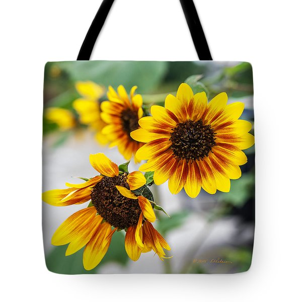 Tote Bag featuring the photograph Sun Flowers In Bloom by Edward Peterson