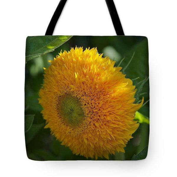 Sun Tote Bag by Joseph Yarbrough