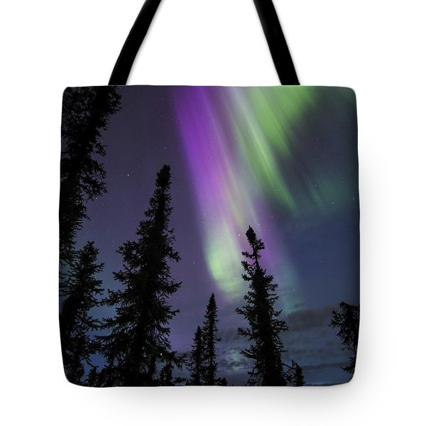 Sun-kissed Aurora Above The Spruces Tote Bag