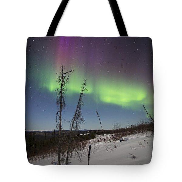 Sun-kissed Aurora Tote Bag