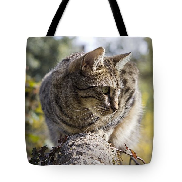 Tote Bag featuring the photograph Sun-kissed by Helga Novelli