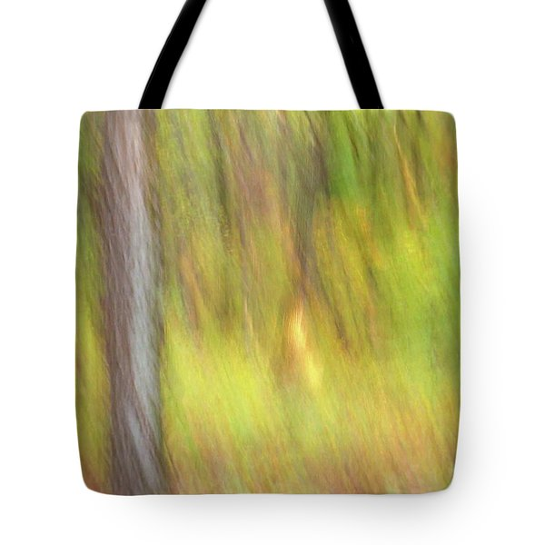Tote Bag featuring the photograph Sun Kissed Tree by Bernhart Hochleitner