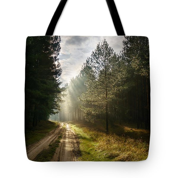 Tote Bag featuring the photograph Sun Light At Pine Forest by Dmytro Korol