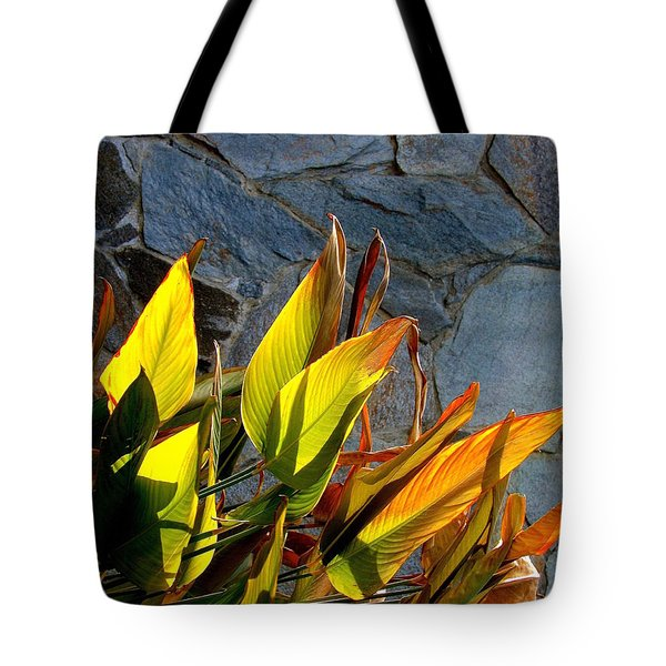 Sun Loving Tote Bag