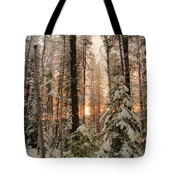 Sun Of Winter Trees Tote Bag