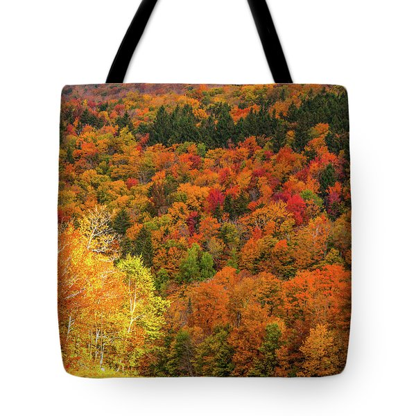 Sun Peeking Through Tote Bag