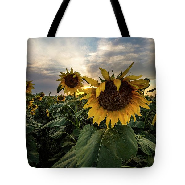 Tote Bag featuring the photograph Sun Rays  by Aaron J Groen