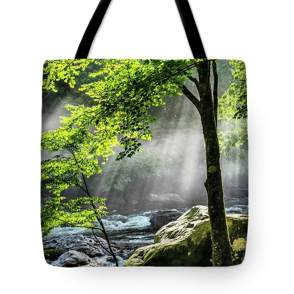 Sun Rays On Williams River  Tote Bag