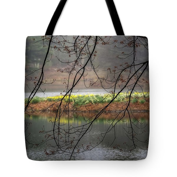 Tote Bag featuring the photograph Sun Shower by Bill Wakeley