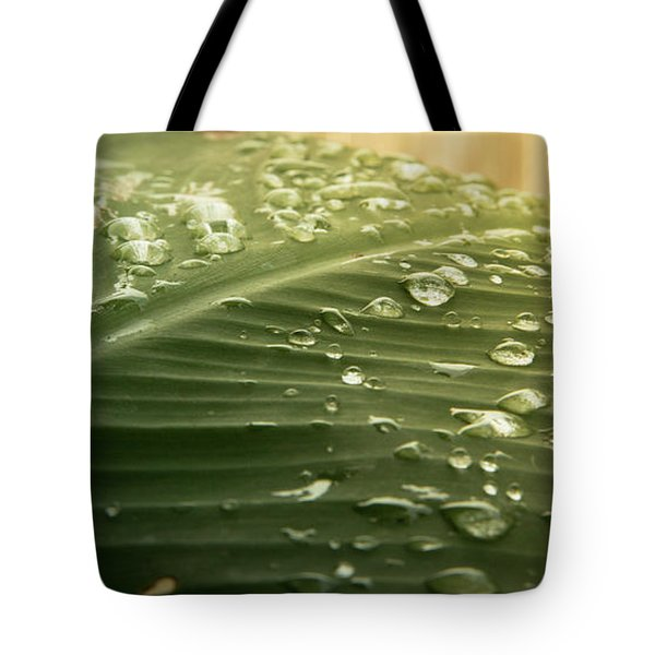 Sun Shower Tote Bag by Stefanie Silva