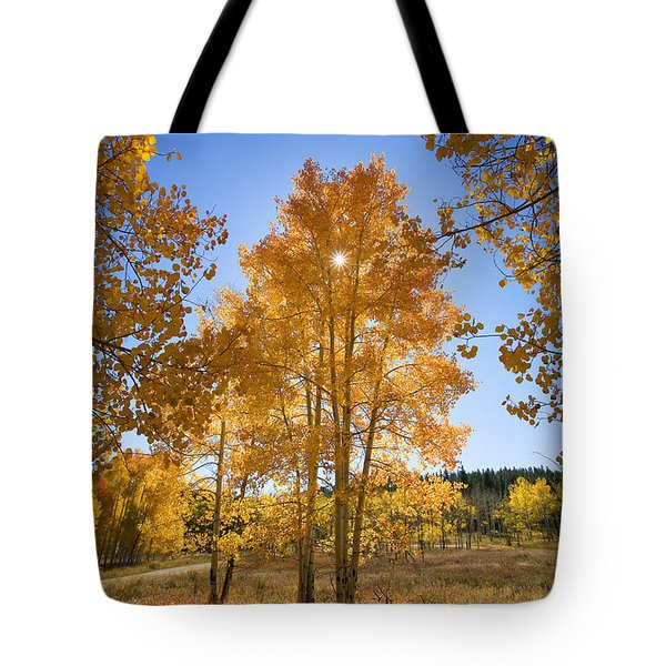 Sun Through Aspens Tote Bag by Ron Dahlquist - Printscapes