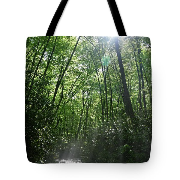 Sun Through The Trees Tote Bag