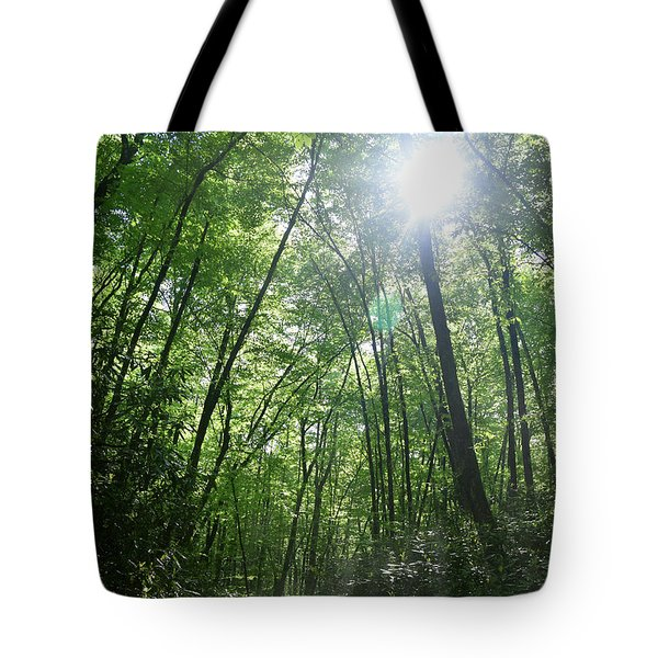 Sun Through The Trees Tote Bag