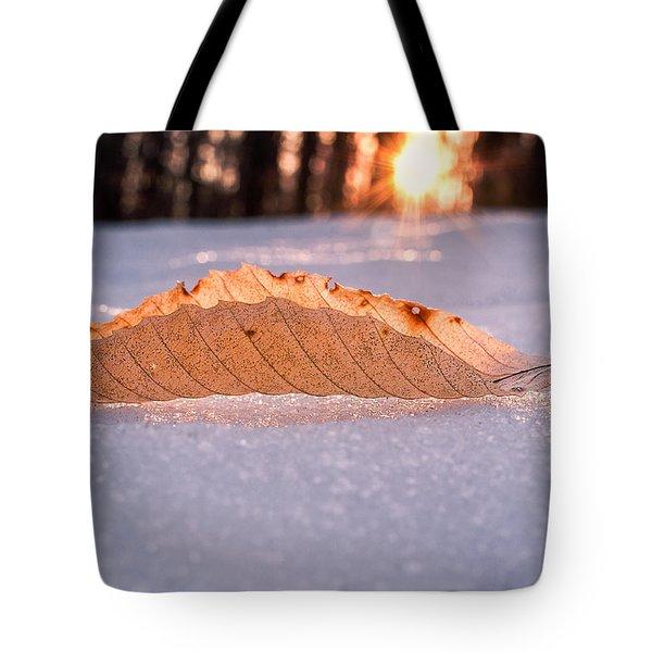Sunbathing Tote Bag