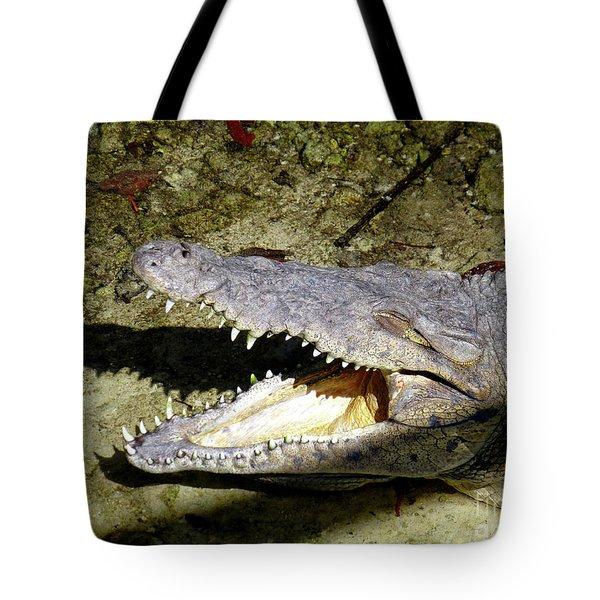 Sunbathing Croc Tote Bag