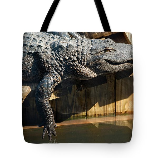 Sunbathing Gator Tote Bag