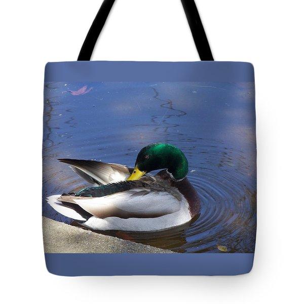 Sunbathing Mallard Tote Bag