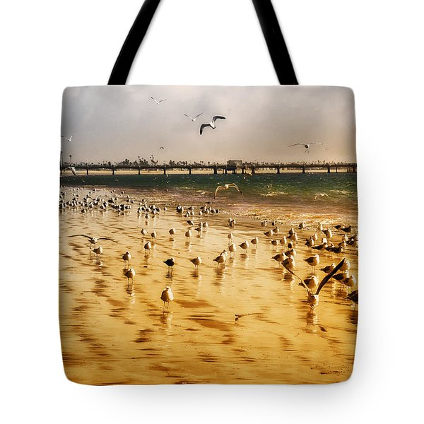 Tote Bag featuring the photograph Sunbathing Seagulls by Joseph Hollingsworth