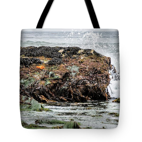 Tote Bag featuring the photograph Sunbathing Starfish by Penny Lisowski